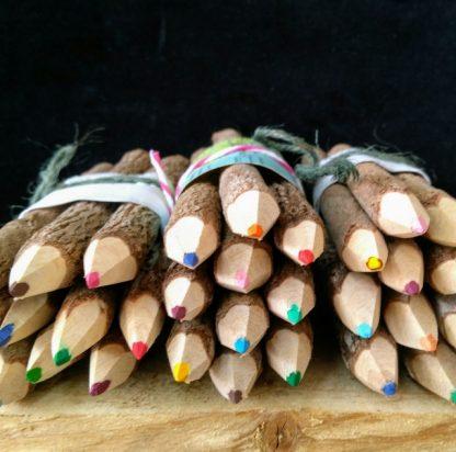 twig pencils