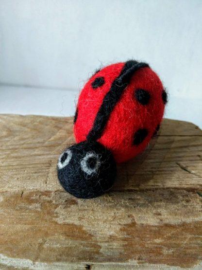 felt ladybird