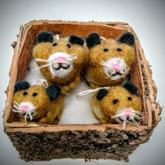 hamsters group