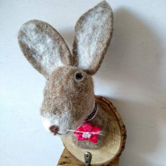 pink rosette hare